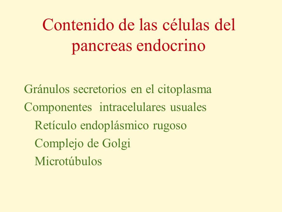 Contenido de las células del pancreas endocrino