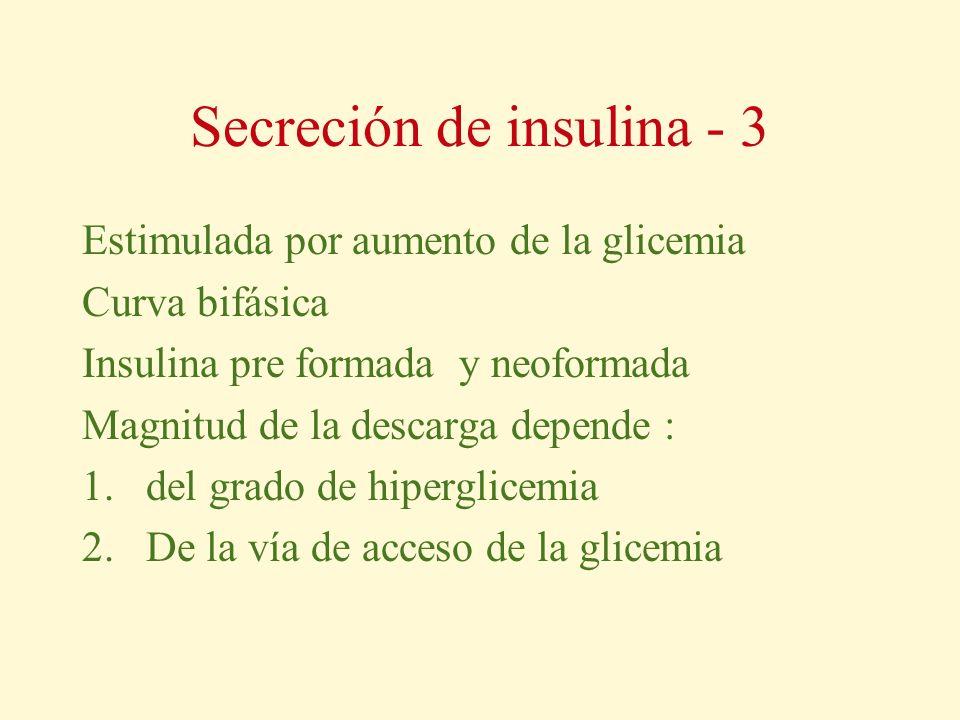 Secreción de insulina - 3