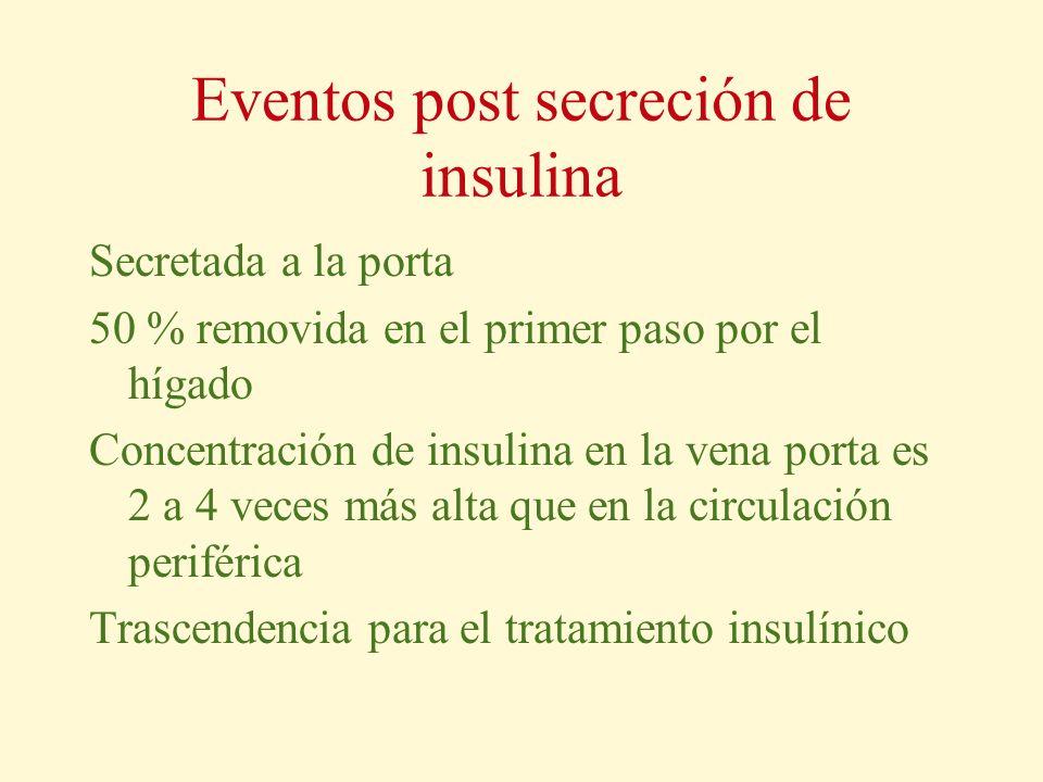 Eventos post secreción de insulina