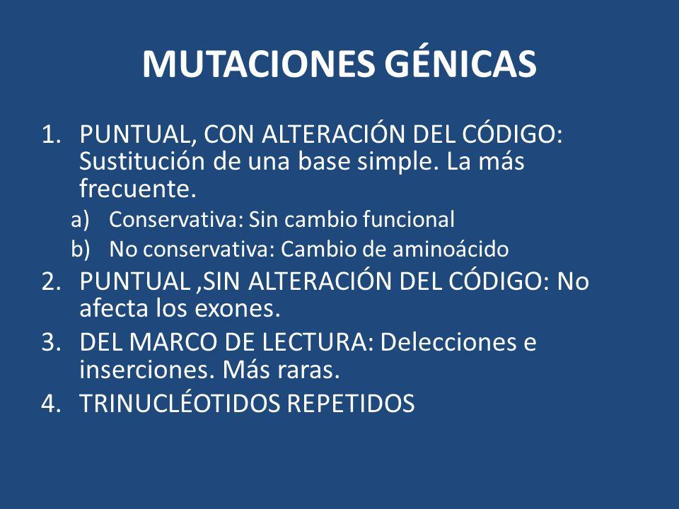 MUTACIONES GÉNICAS PUNTUAL, CON ALTERACIÓN DEL CÓDIGO: Sustitución de una base simple. La más frecuente.