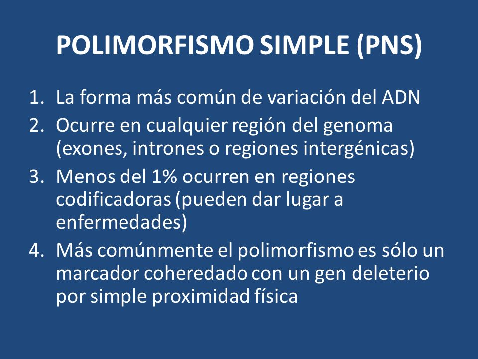 POLIMORFISMO SIMPLE (PNS)