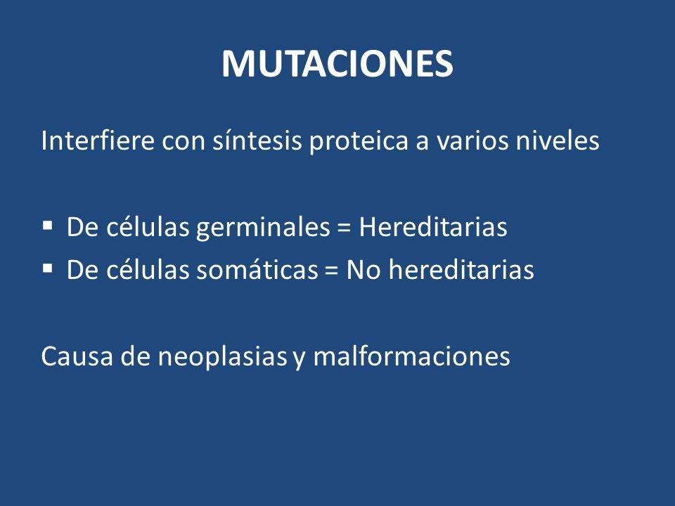 MUTACIONES Interfiere con síntesis proteica a varios niveles