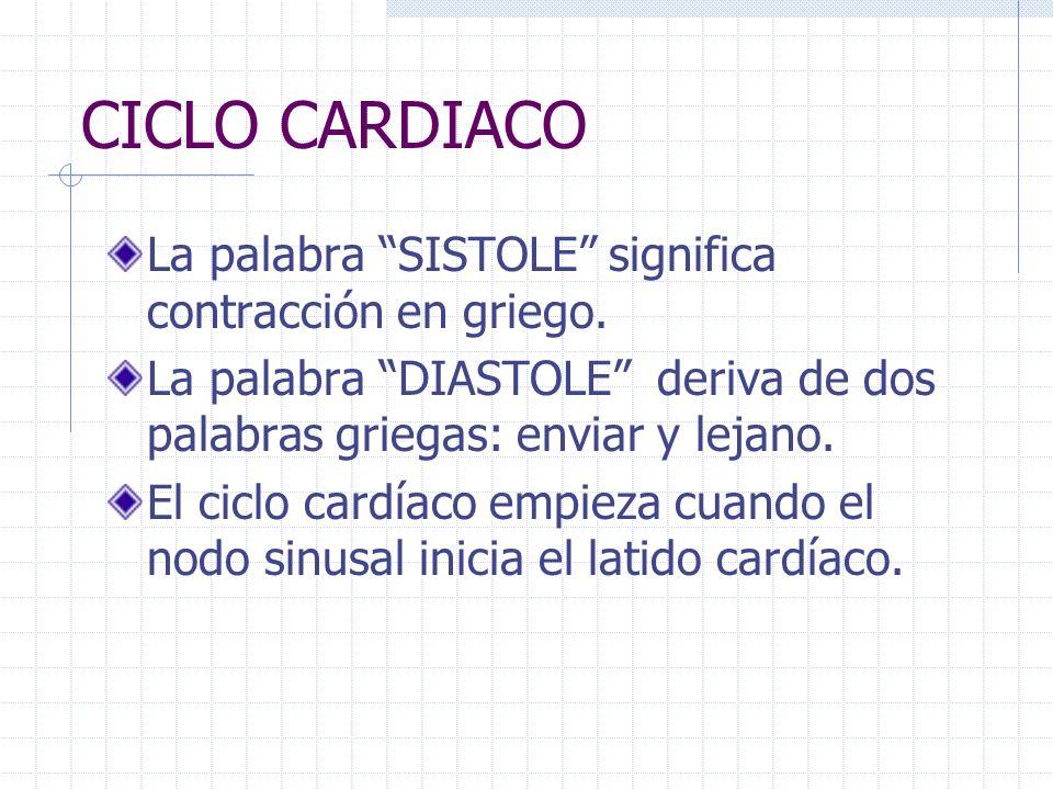 CICLO CARDIACO La palabra SISTOLE significa contracción en griego.