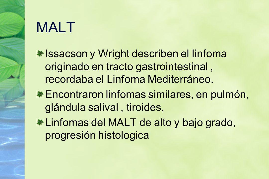 MALT Issacson y Wright describen el linfoma originado en tracto gastrointestinal , recordaba el Linfoma Mediterráneo.