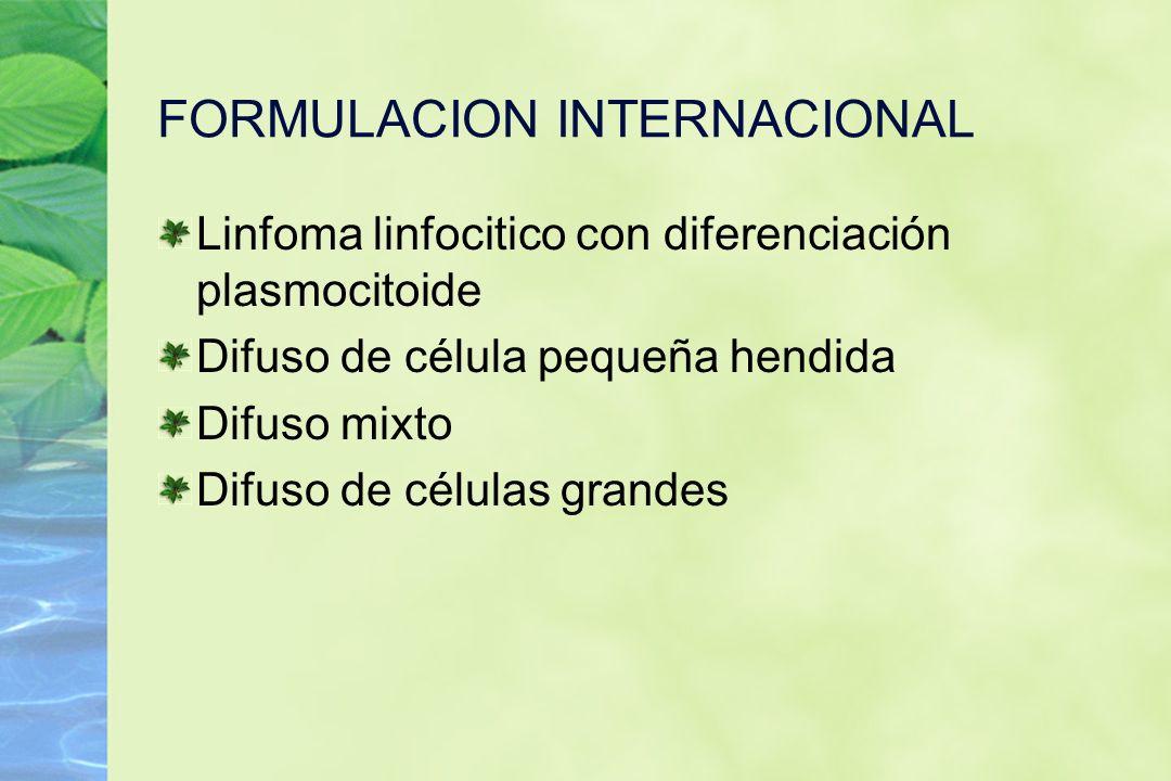 FORMULACION INTERNACIONAL