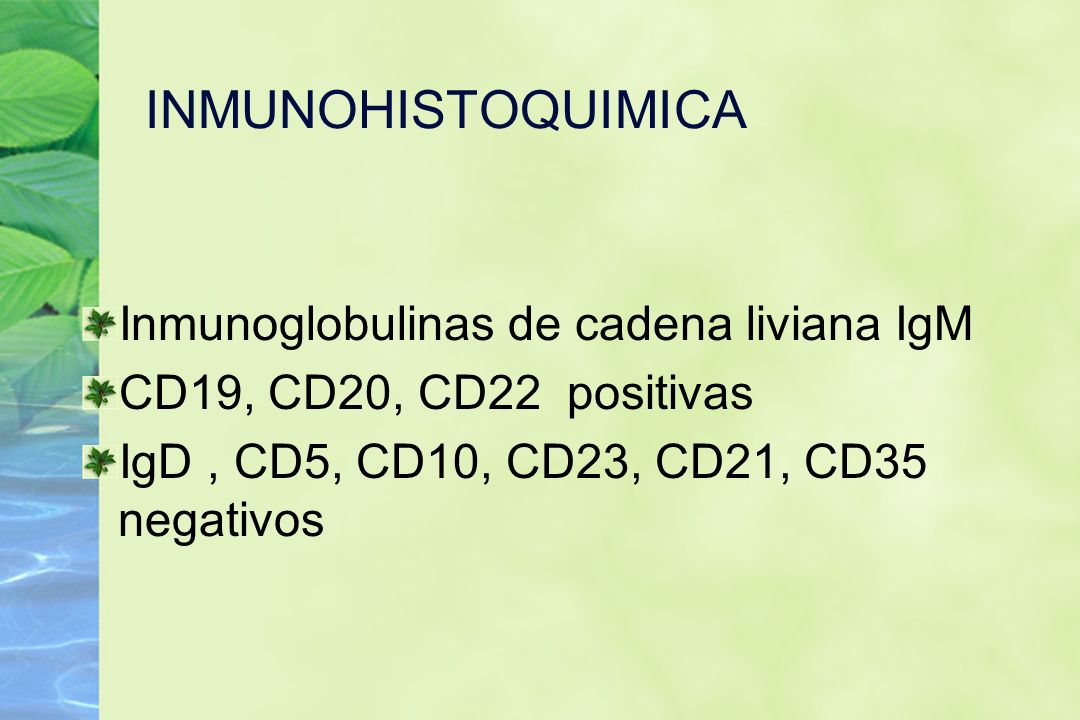 INMUNOHISTOQUIMICA Inmunoglobulinas de cadena liviana IgM