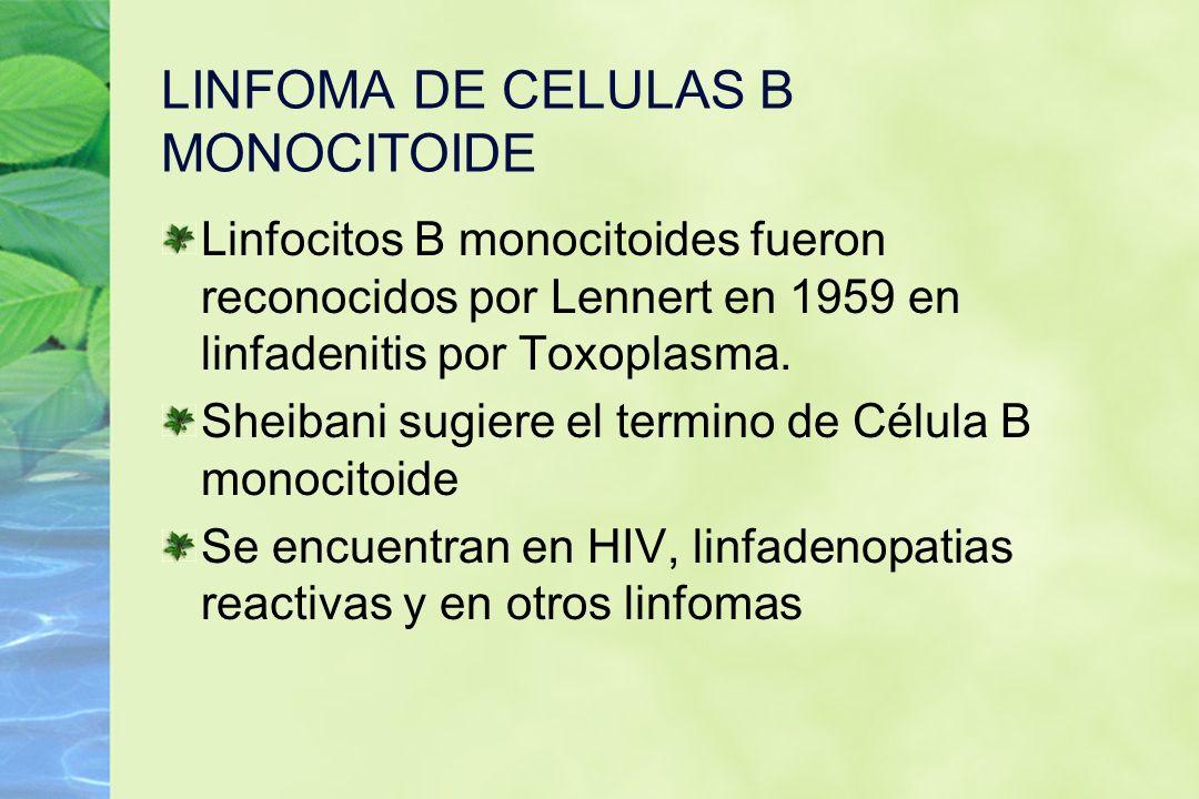 LINFOMA DE CELULAS B MONOCITOIDE