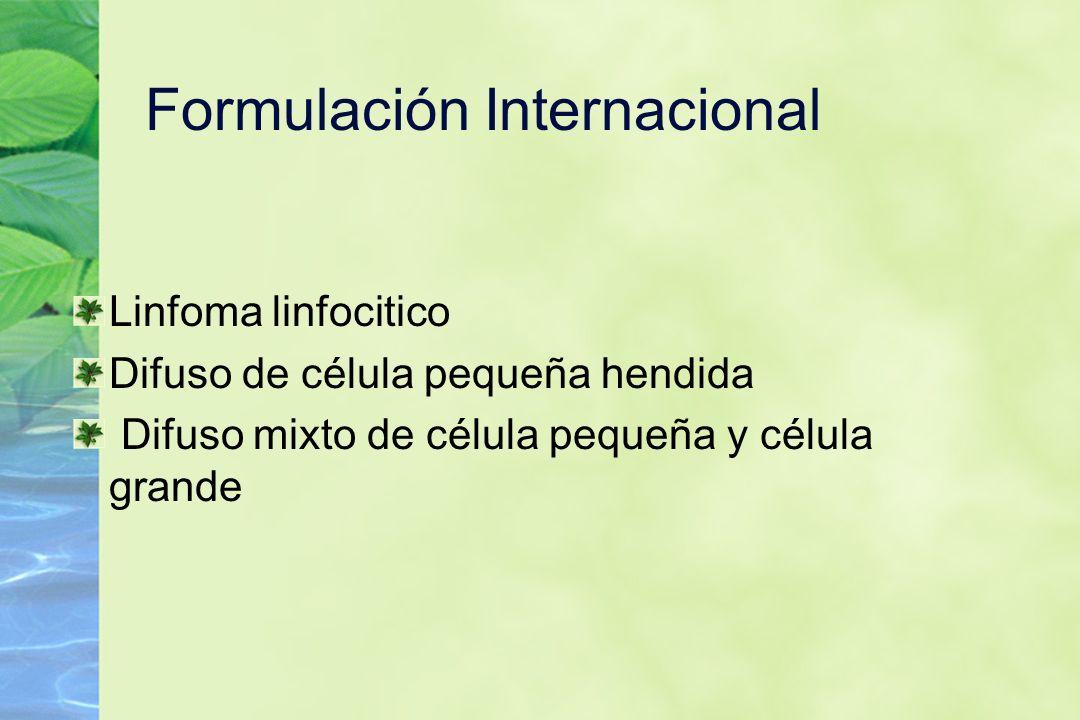 Formulación Internacional