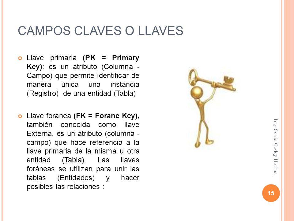 CAMPOS CLAVES O LLAVES
