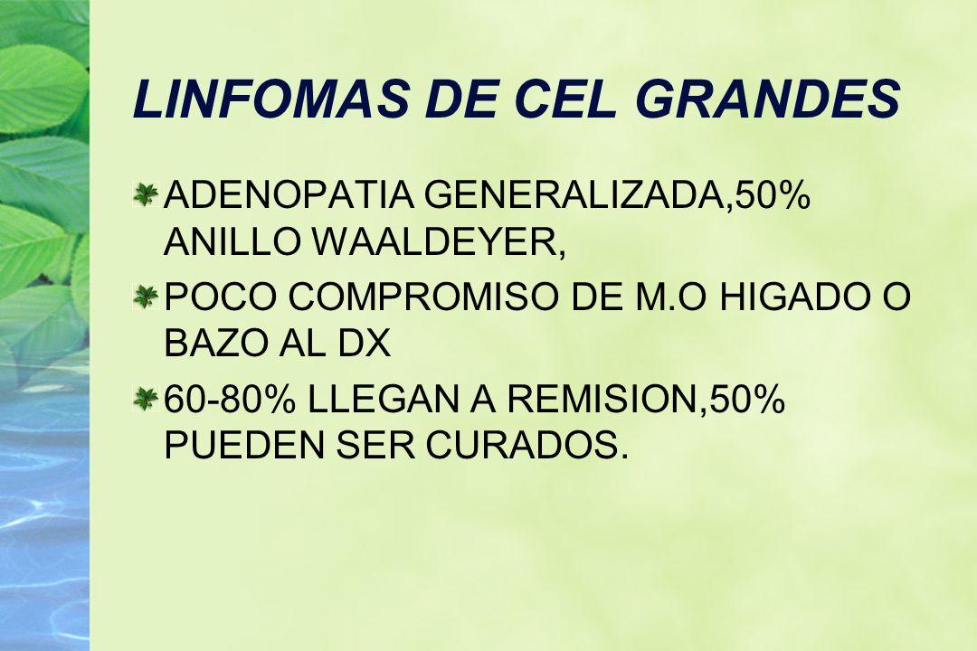 LINFOMAS DE CEL GRANDES