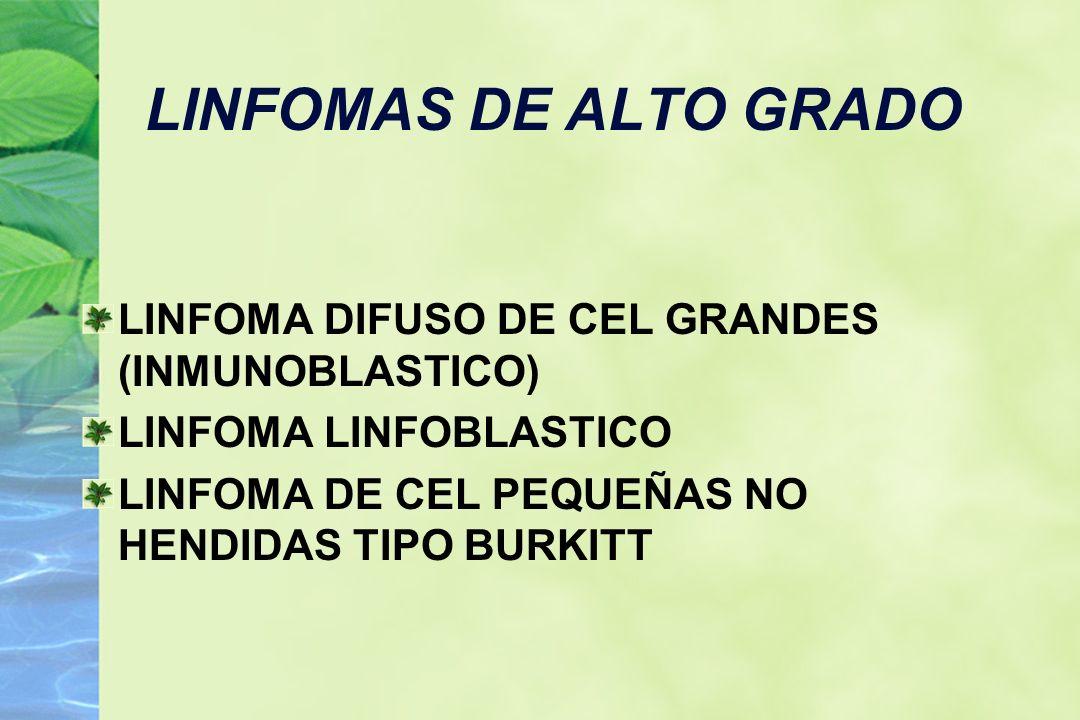 LINFOMAS DE ALTO GRADO LINFOMA DIFUSO DE CEL GRANDES (INMUNOBLASTICO)