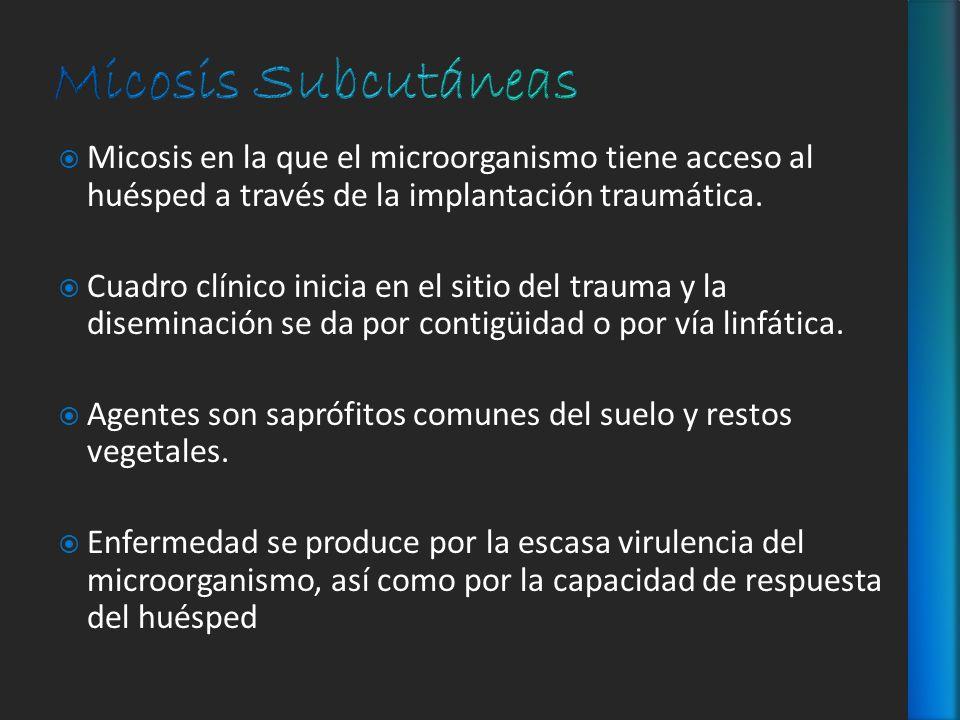 Micosis Subcutáneas Micosis en la que el microorganismo tiene acceso al huésped a través de la implantación traumática.
