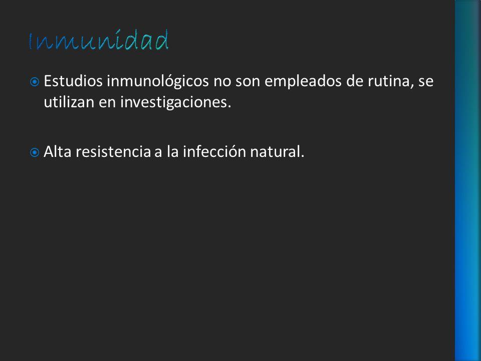 Inmunidad Estudios inmunológicos no son empleados de rutina, se utilizan en investigaciones.