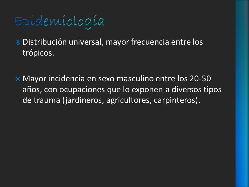 Epidemiología Distribución universal, mayor frecuencia entre los trópicos.