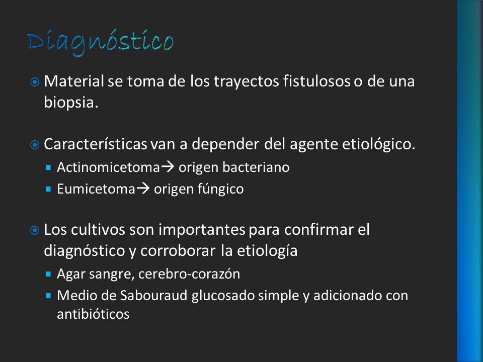 Diagnóstico Material se toma de los trayectos fistulosos o de una biopsia. Características van a depender del agente etiológico.