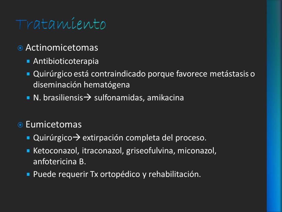 Tratamiento Actinomicetomas Eumicetomas Antibioticoterapia