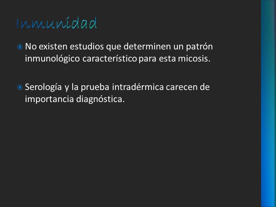 Inmunidad No existen estudios que determinen un patrón inmunológico característico para esta micosis.