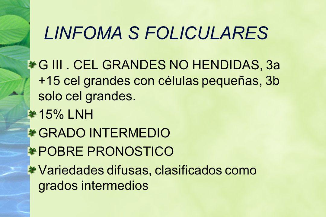 LINFOMA S FOLICULARESG III . CEL GRANDES NO HENDIDAS, 3a +15 cel grandes con células pequeñas, 3b solo cel grandes.