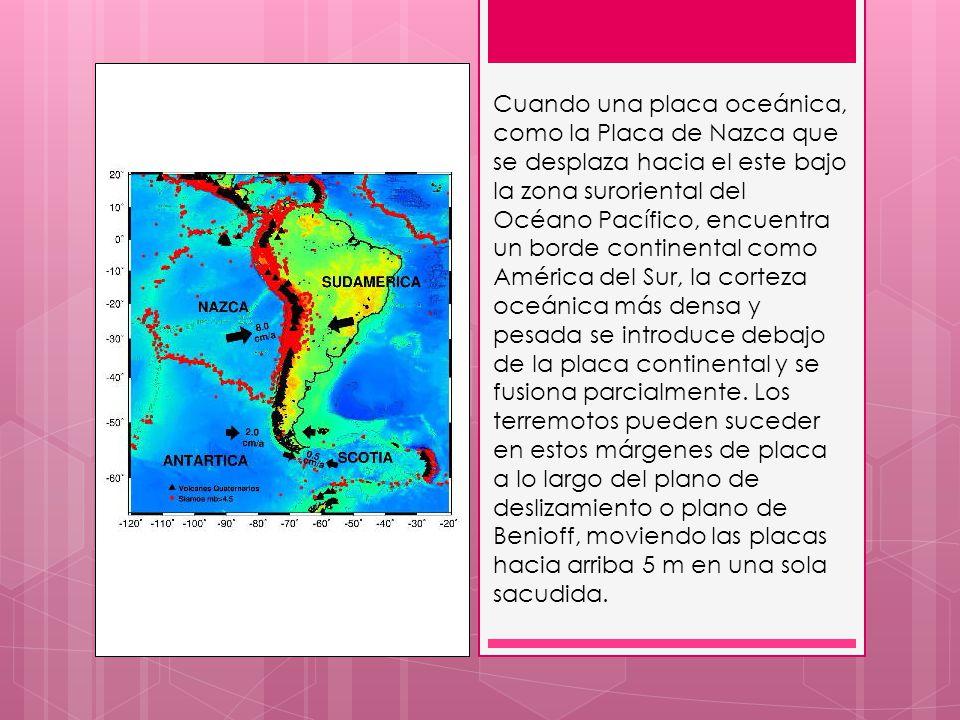 Cuando una placa oceánica, como la Placa de Nazca que se desplaza hacia el este bajo la zona suroriental del Océano Pacífico, encuentra un borde continental como América del Sur, la corteza oceánica más densa y pesada se introduce debajo de la placa continental y se fusiona parcialmente.