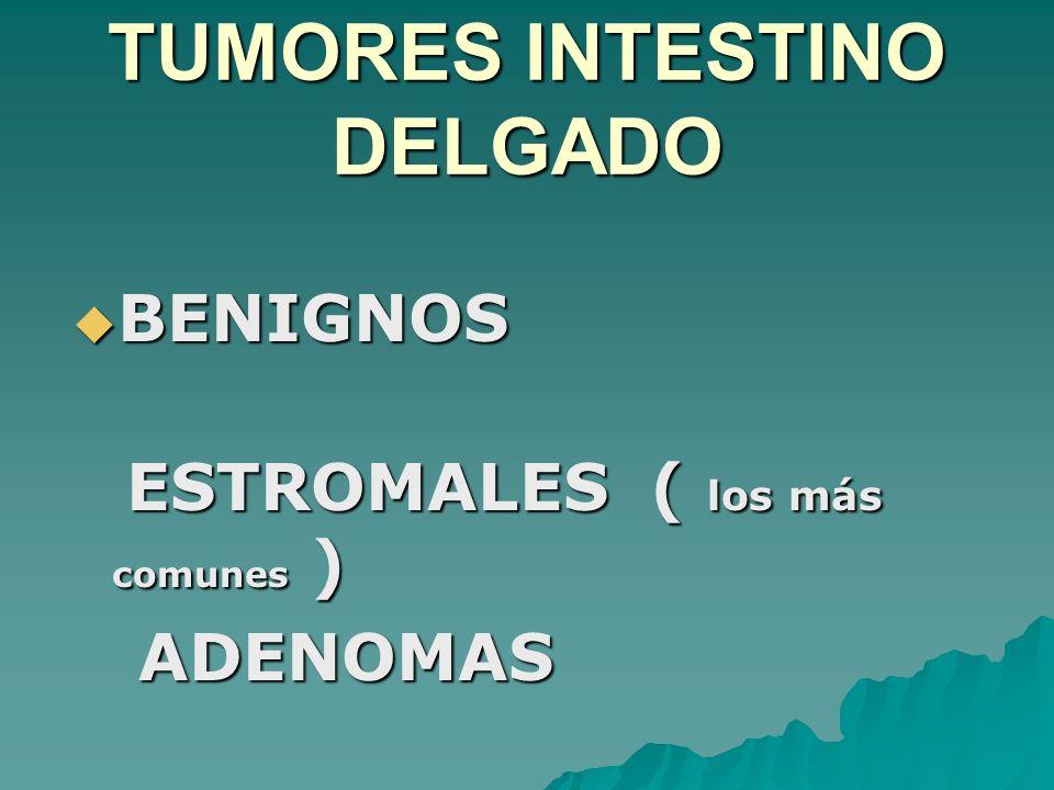 TUMORES INTESTINO DELGADO