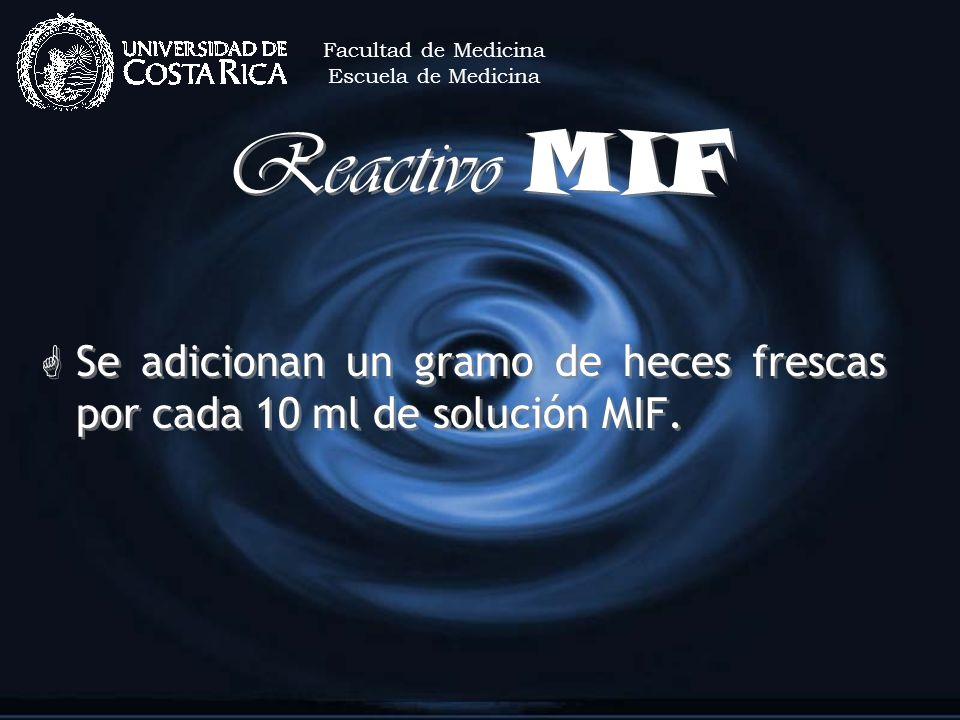 Facultad de MedicinaEscuela de Medicina.Reactivo MIF.