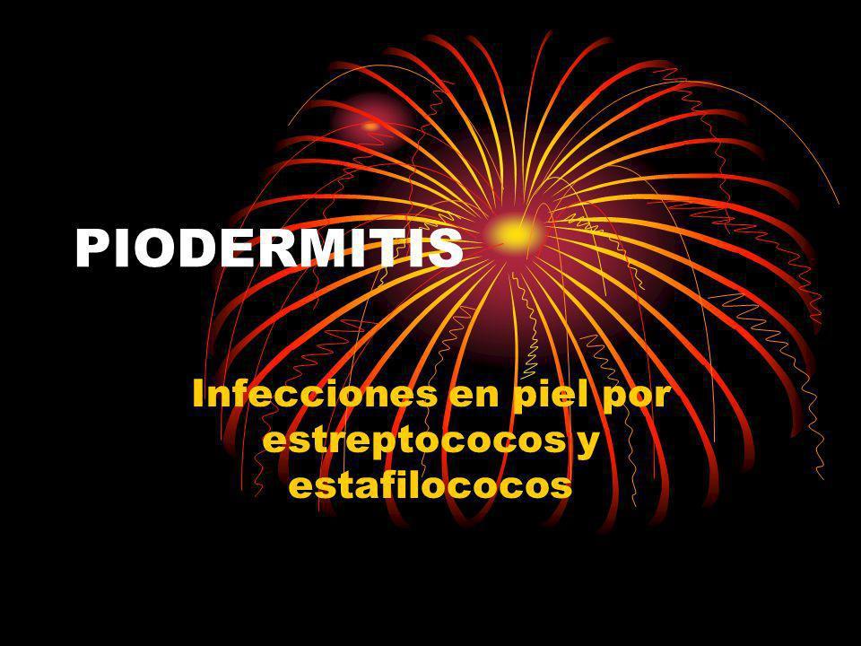 Infecciones en piel por estreptococos y estafilococos