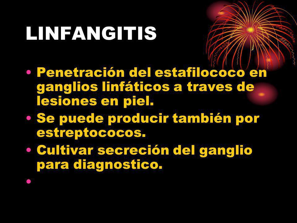 LINFANGITIS Penetración del estafilococo en ganglios linfáticos a traves de lesiones en piel. Se puede producir también por estreptococos.