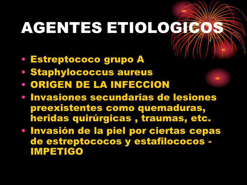 AGENTES ETIOLOGICOS Estreptococo grupo A Staphylococcus aureus
