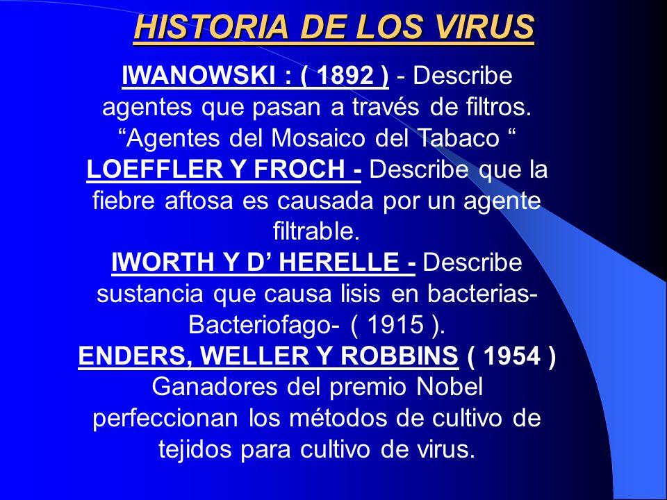 HISTORIA DE LOS VIRUS IWANOWSKI : ( 1892 ) - Describe agentes que pasan a través de filtros. Agentes del Mosaico del Tabaco