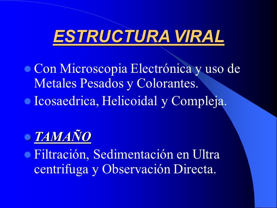 ESTRUCTURA VIRAL Con Microscopia Electrónica y uso de Metales Pesados y Colorantes. Icosaedrica, Helicoidal y Compleja.