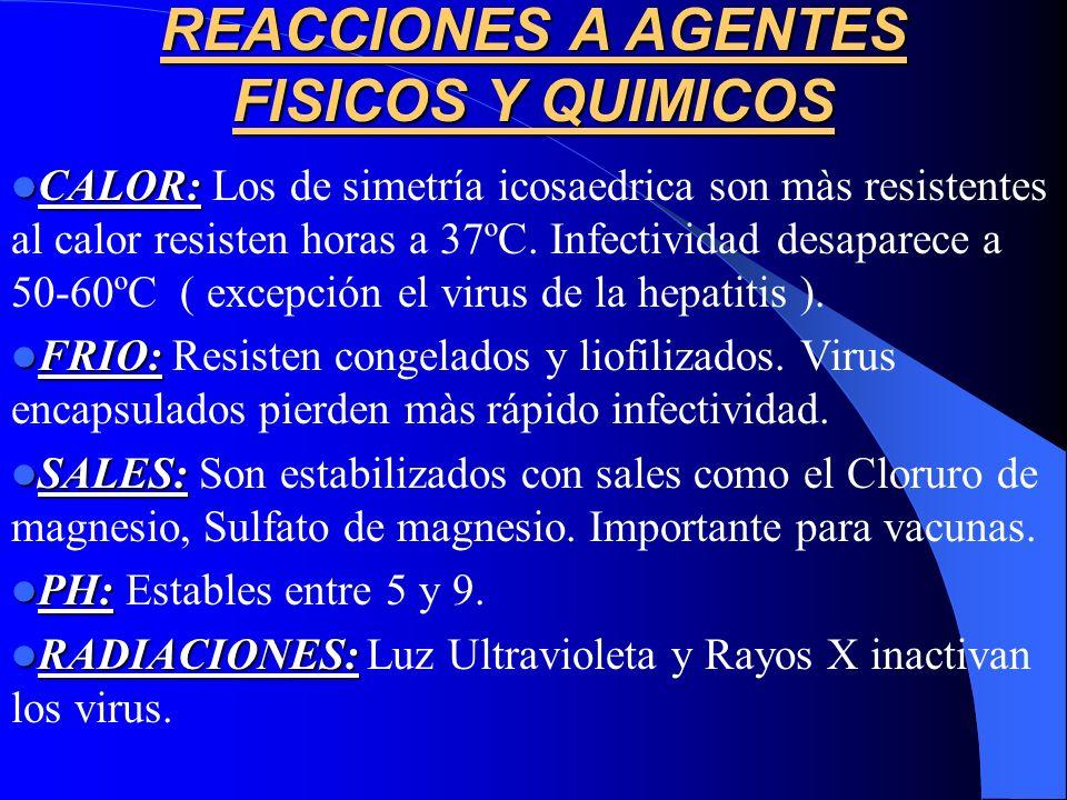REACCIONES A AGENTES FISICOS Y QUIMICOS