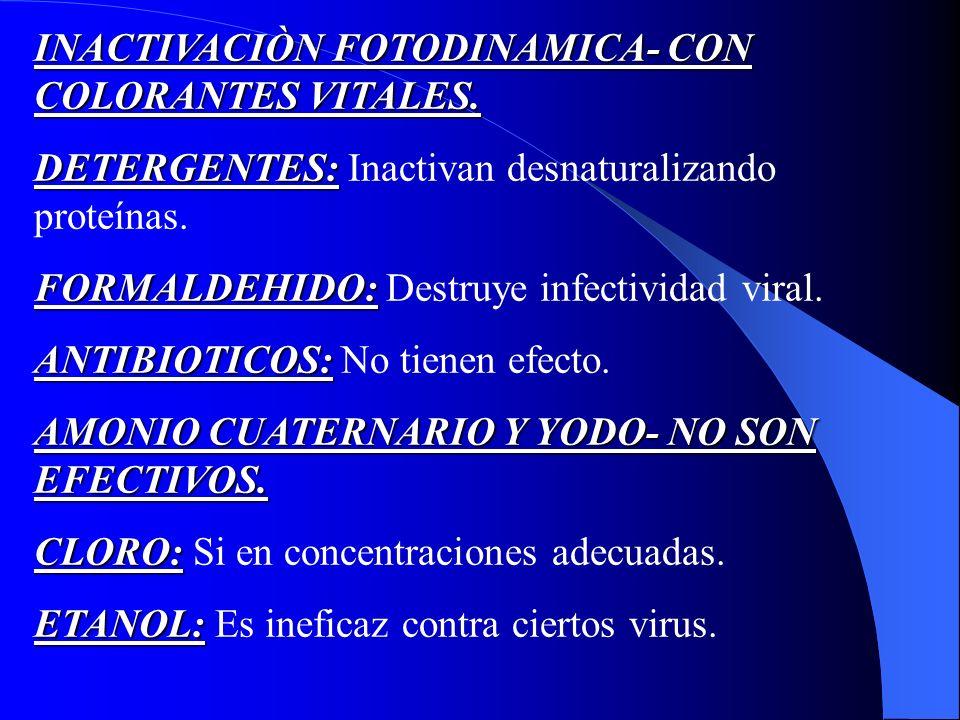 INACTIVACIÒN FOTODINAMICA- CON COLORANTES VITALES.