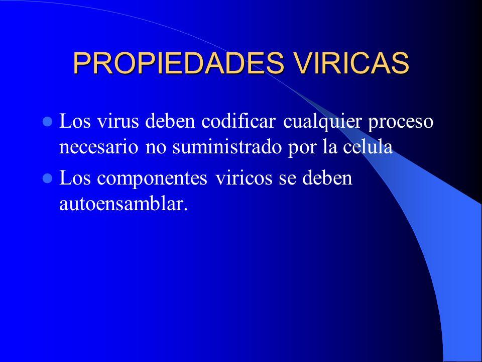PROPIEDADES VIRICAS Los virus deben codificar cualquier proceso necesario no suministrado por la celula.