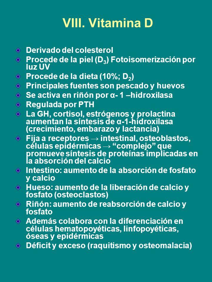 VIII. Vitamina D Derivado del colesterol