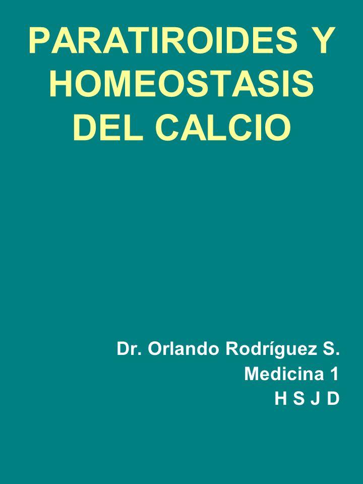 PARATIROIDES Y HOMEOSTASIS DEL CALCIO