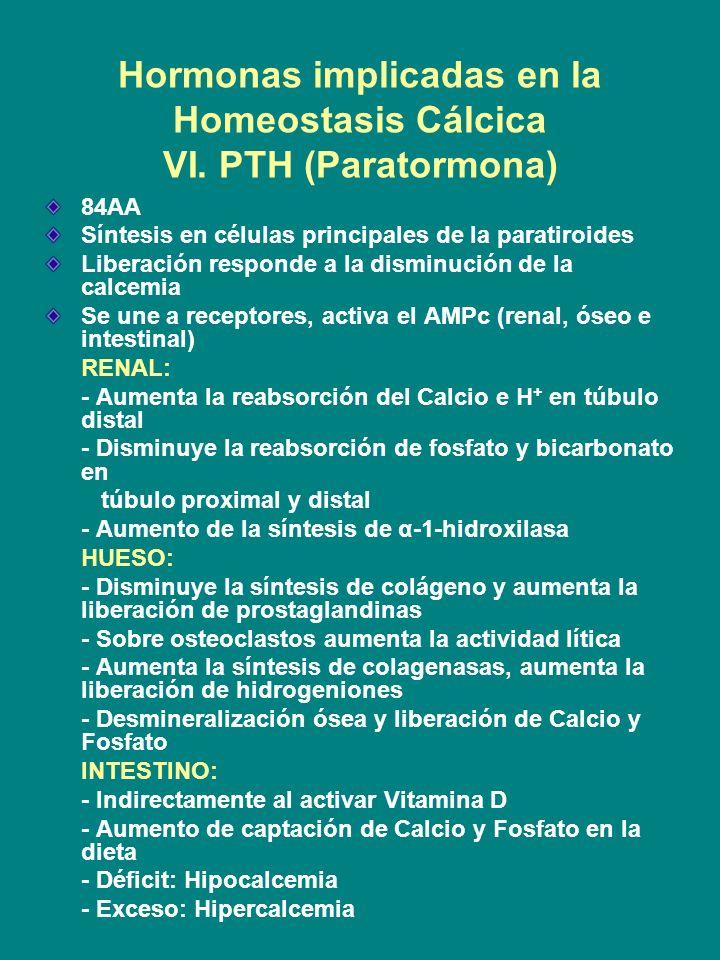 Hormonas implicadas en la Homeostasis Cálcica VI. PTH (Paratormona)