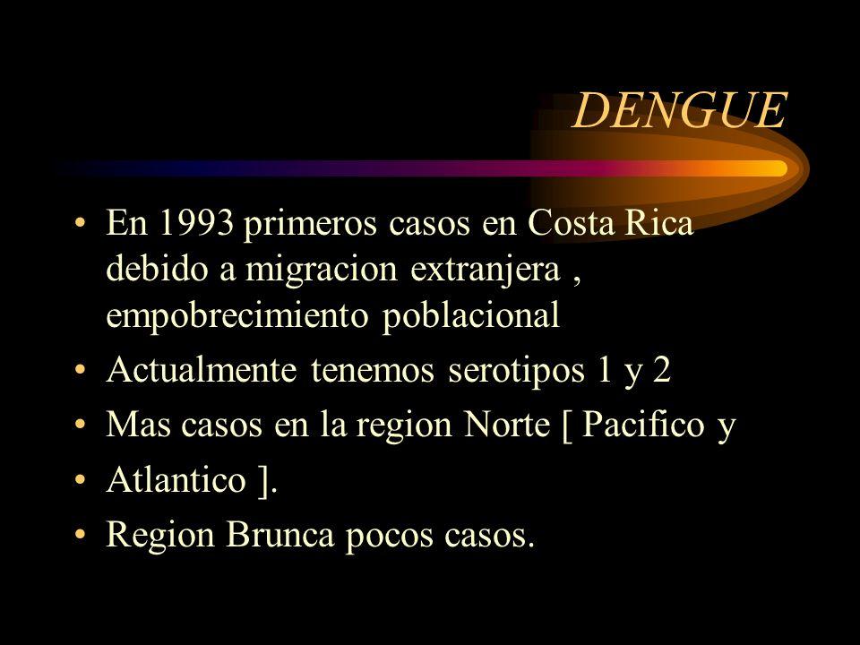 DENGUE En 1993 primeros casos en Costa Rica debido a migracion extranjera , empobrecimiento poblacional.