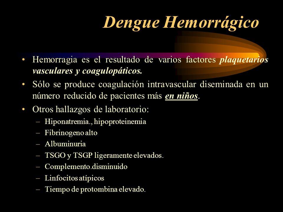Dengue Hemorrágico Hemorragia es el resultado de varios factores plaquetarios vasculares y coagulopáticos.