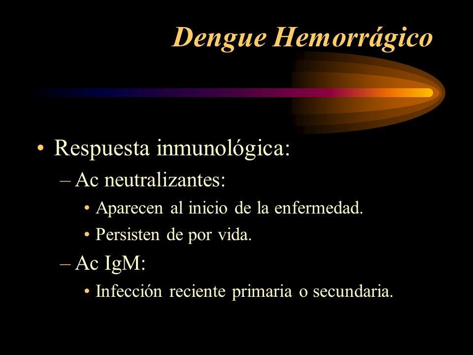 Dengue Hemorrágico Respuesta inmunológica: Ac neutralizantes: Ac IgM: