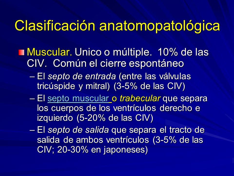 Clasificación anatomopatológica