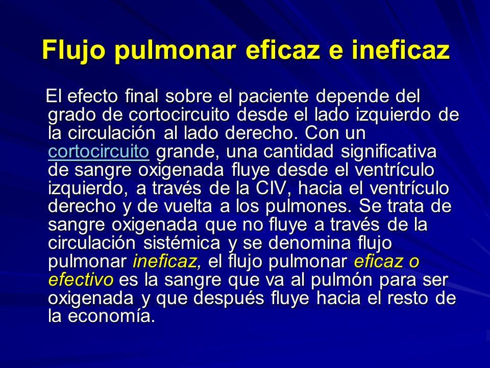 Flujo pulmonar eficaz e ineficaz