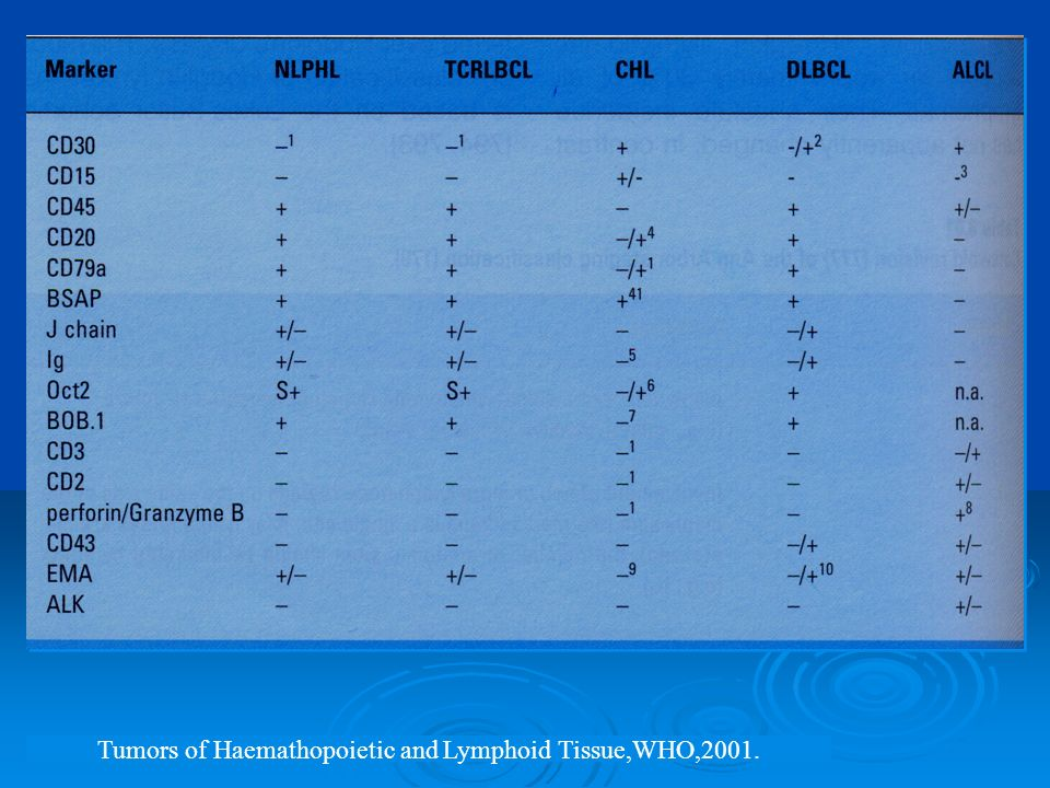 Tumors of Haemathopoietic and Lymphoid Tissue,WHO,2001.