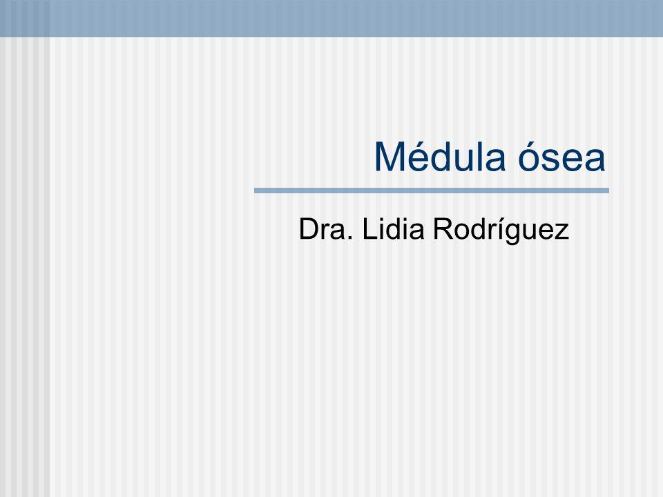 Médula ósea Dra. Lidia Rodríguez
