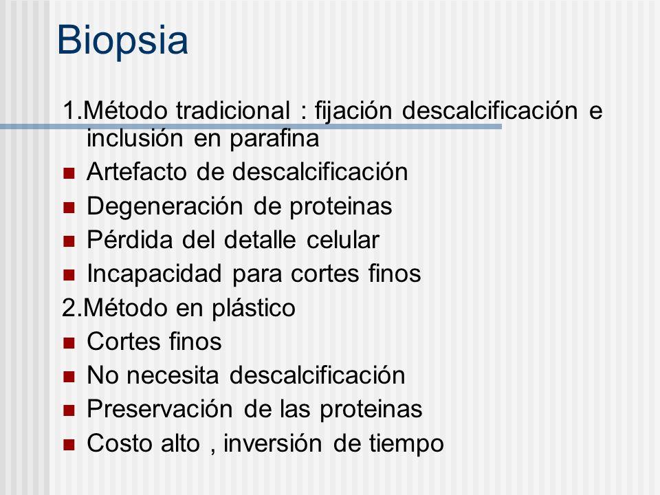 Biopsia 1.Método tradicional : fijación descalcificación e inclusión en parafina. Artefacto de descalcificación.