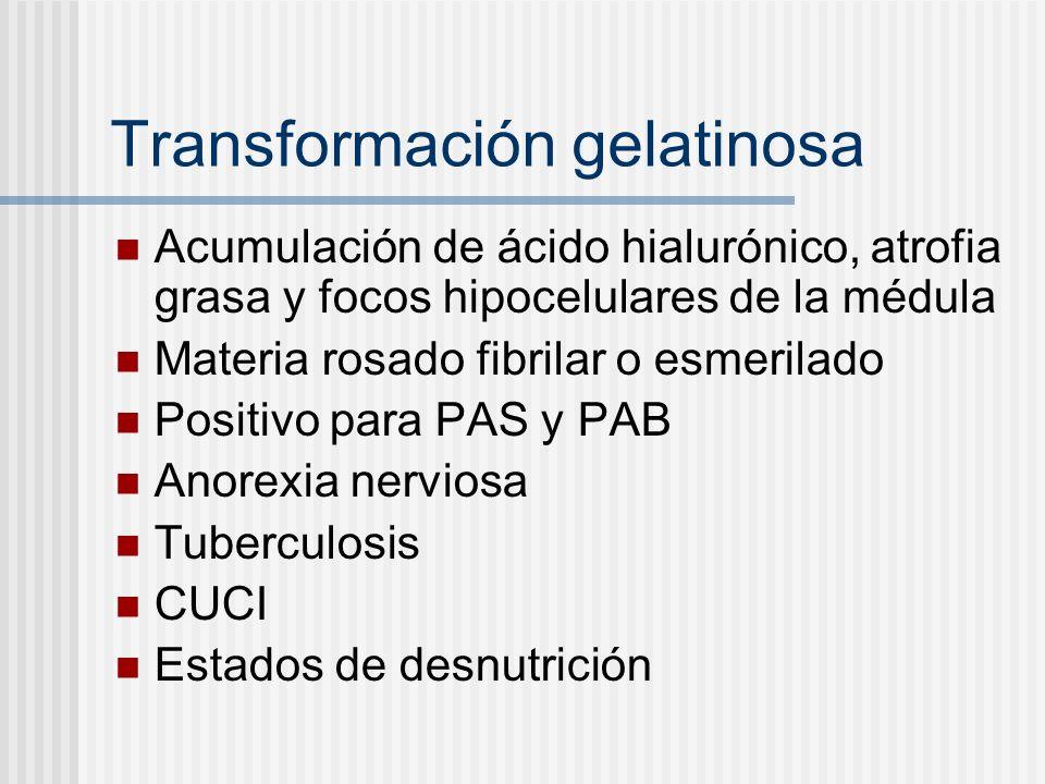 Transformación gelatinosa