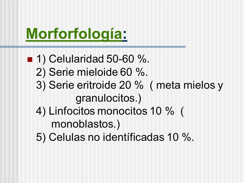 Morforfología: