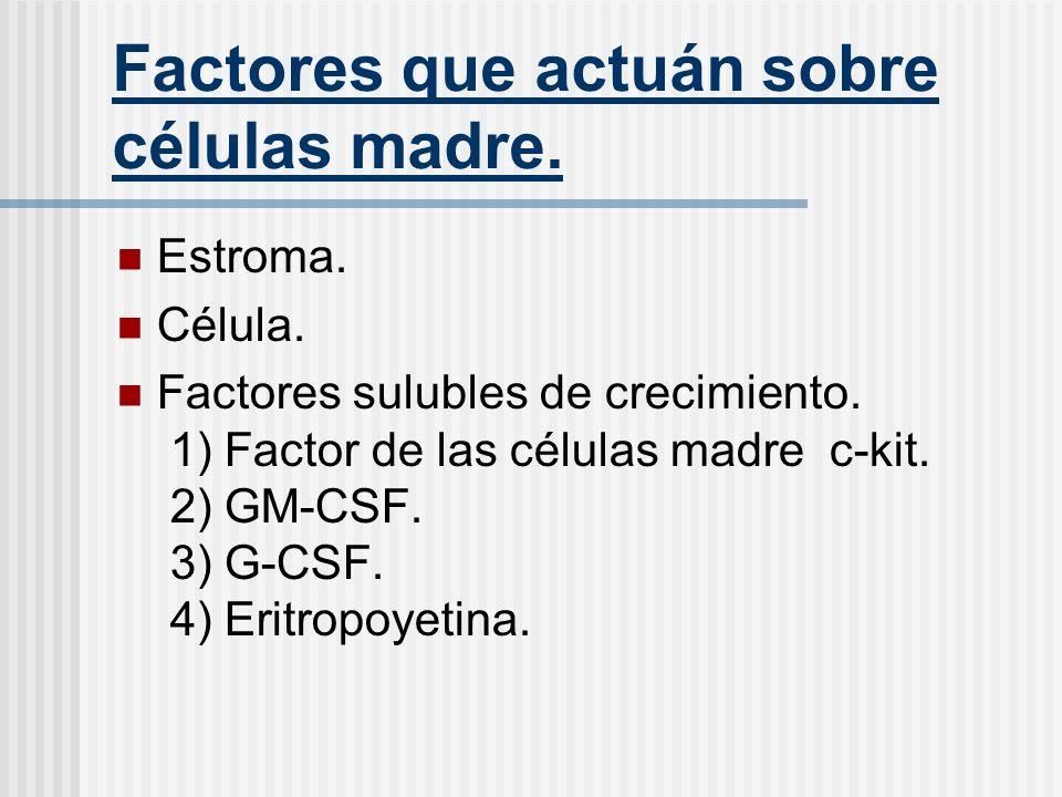 Factores que actuán sobre células madre.