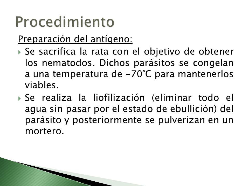 Procedimiento Preparación del antígeno: