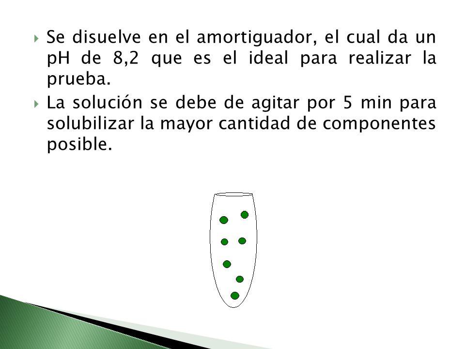 Se disuelve en el amortiguador, el cual da un pH de 8,2 que es el ideal para realizar la prueba.