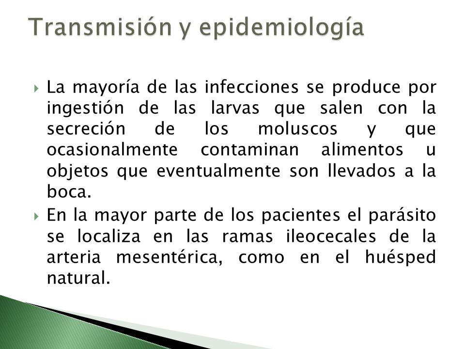 Transmisión y epidemiología